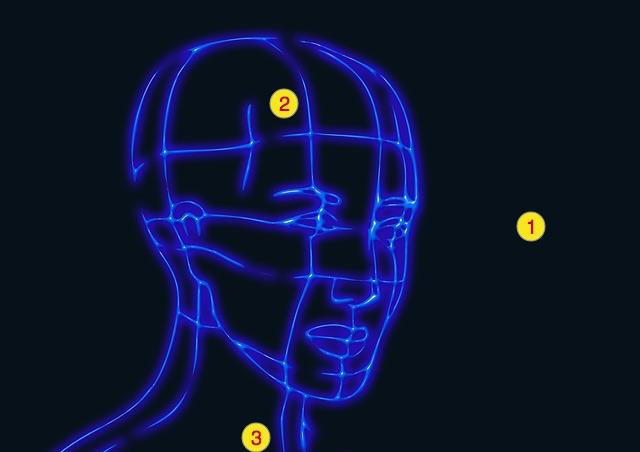 身体上部图:眼睛、头、心